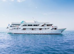 Vakantie Kroatië Cruise Dalmatie Split Dubrovnik