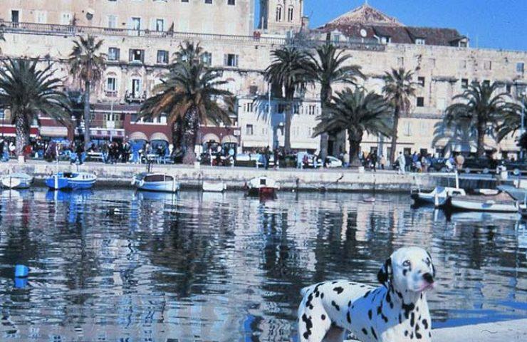 Split Dalmatie Kroatie