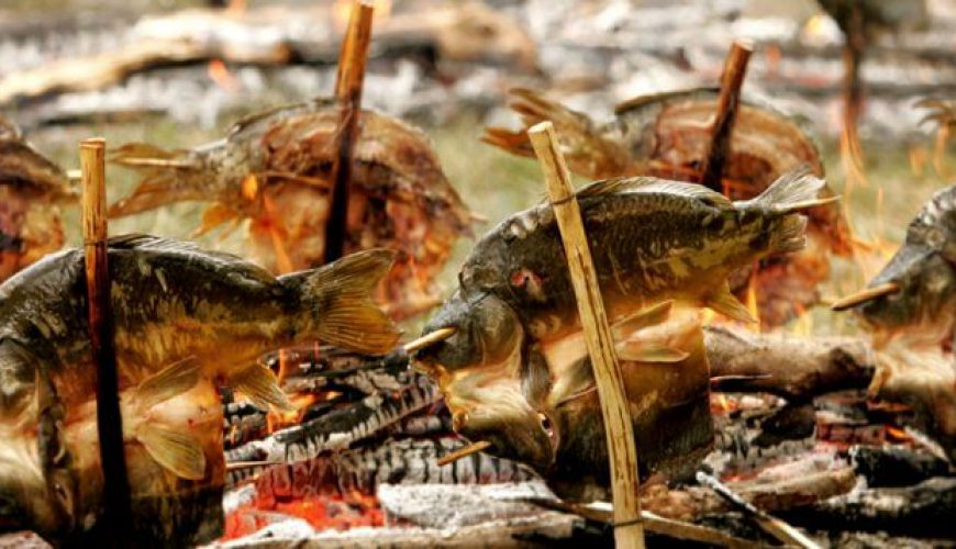 karper op vork kroatie gerechten eten croatia food wine wijn vis fish